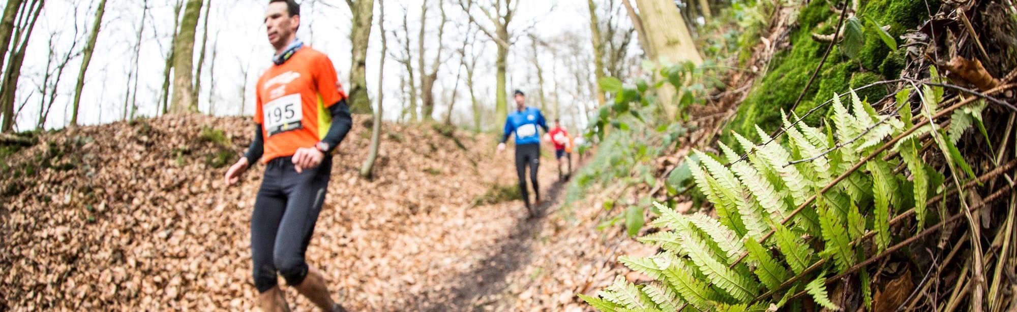 Joggingparcours Vijlenerbos Vaals