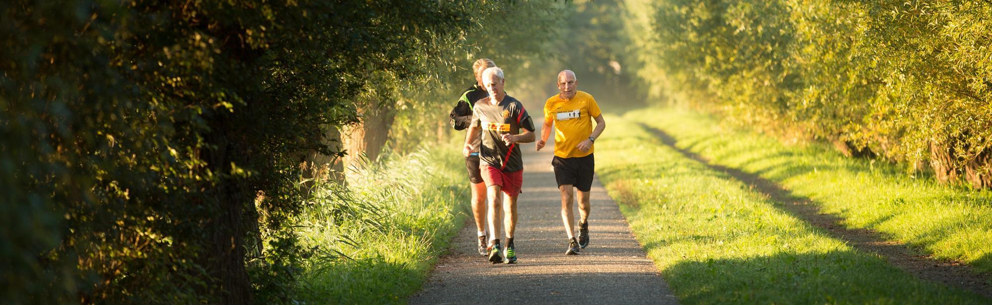 Trail Epen 12,5 km Gulpen-wittem