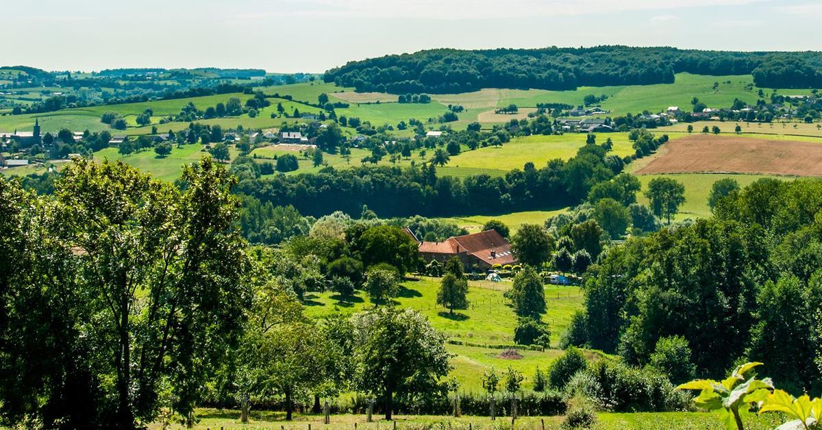 Wandelroute - Kasteel Neubourg G14 Gulpen-Wittem 7,2 km