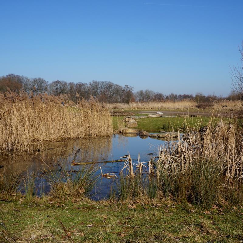 Heidekamppark - Foto 3