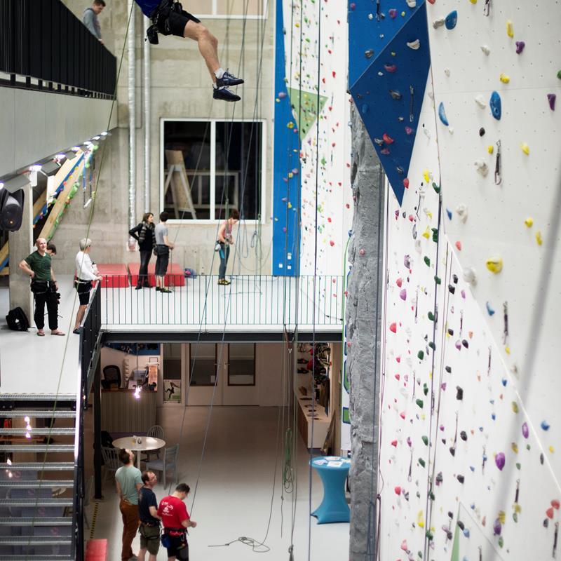 IVY climbing - Foto 0