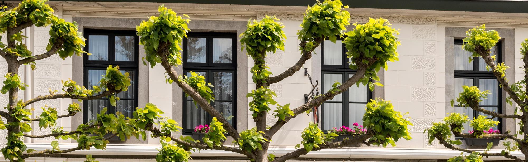 Hotel-Restaurant In den Roden Leeuw van Limburg