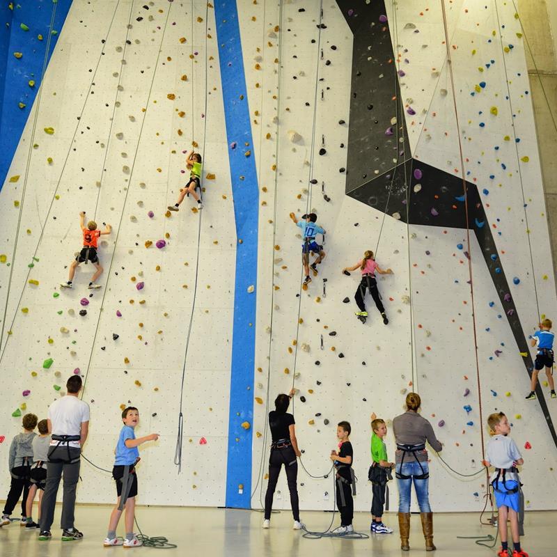 IVY climbing - Foto 1