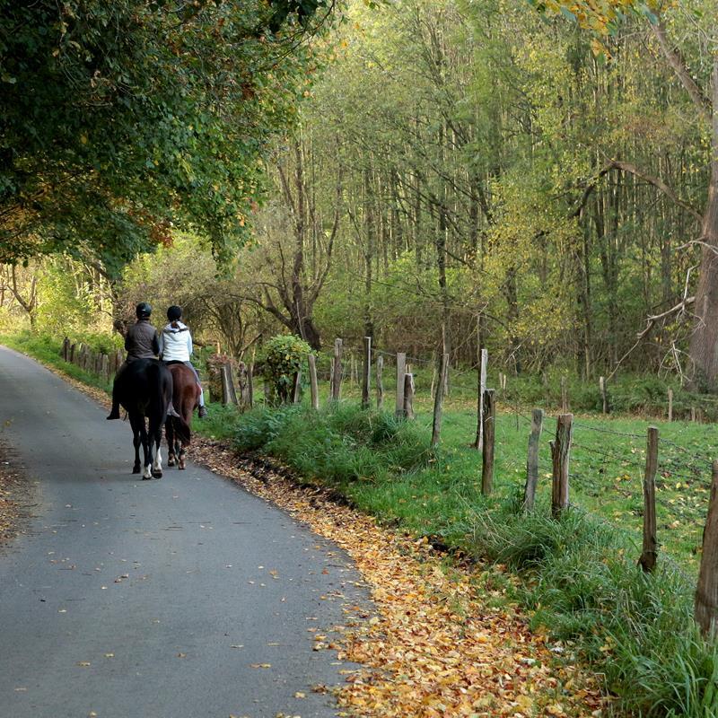 Park Gravenrode - Foto 1