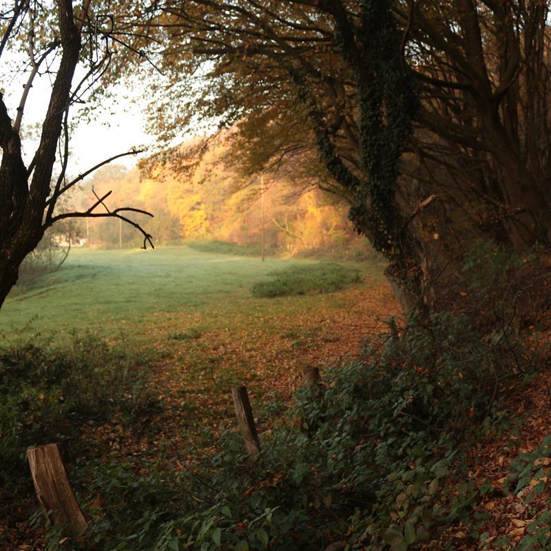 Park Gravenrode - Foto 2