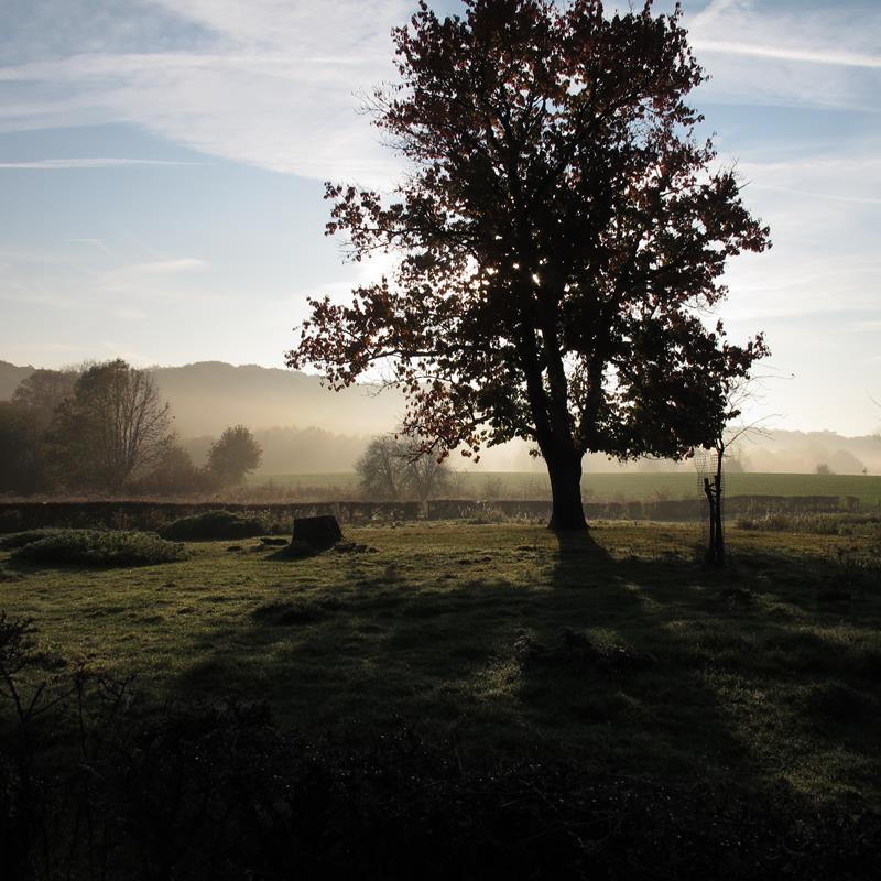 Park Gravenrode - Foto 3