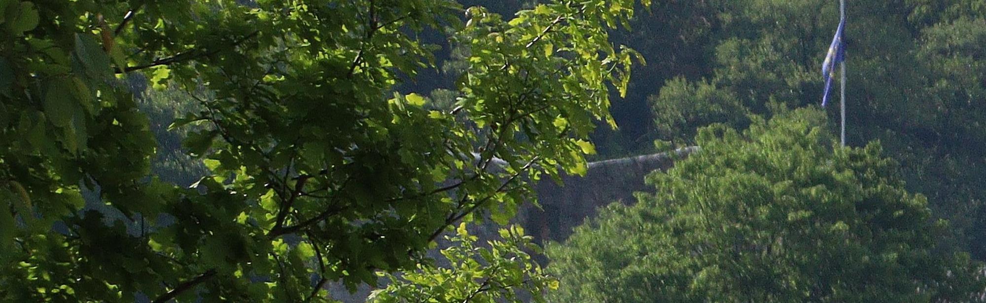 Pferdelandpark