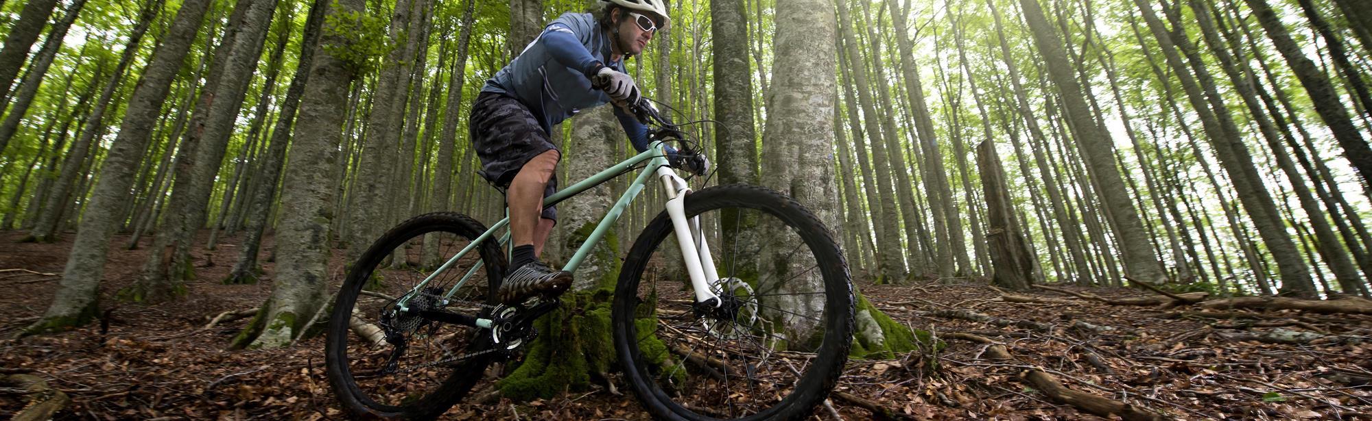 Bike Trail Strijthagen