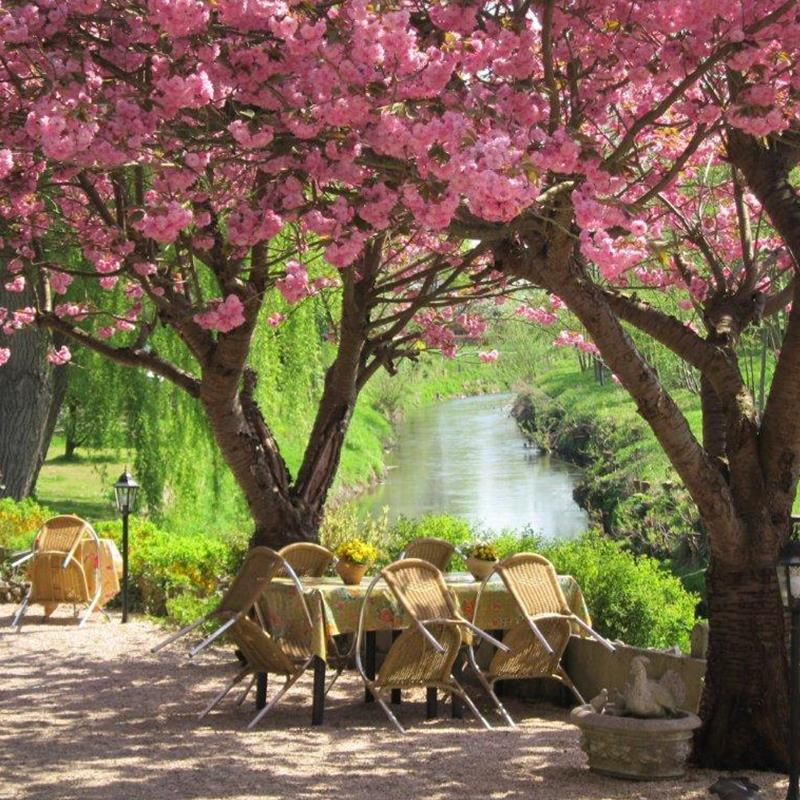 Pension B&B Sint Rosa - Foto 2
