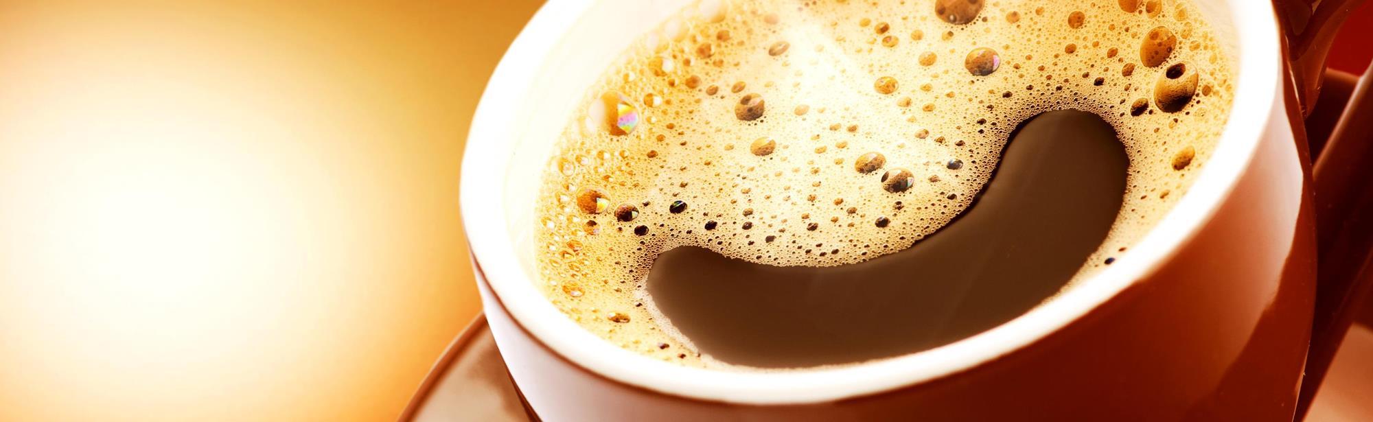 Coffee Mundo The Library Espresso & Brew Bar