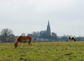 Op pad door Mechelen