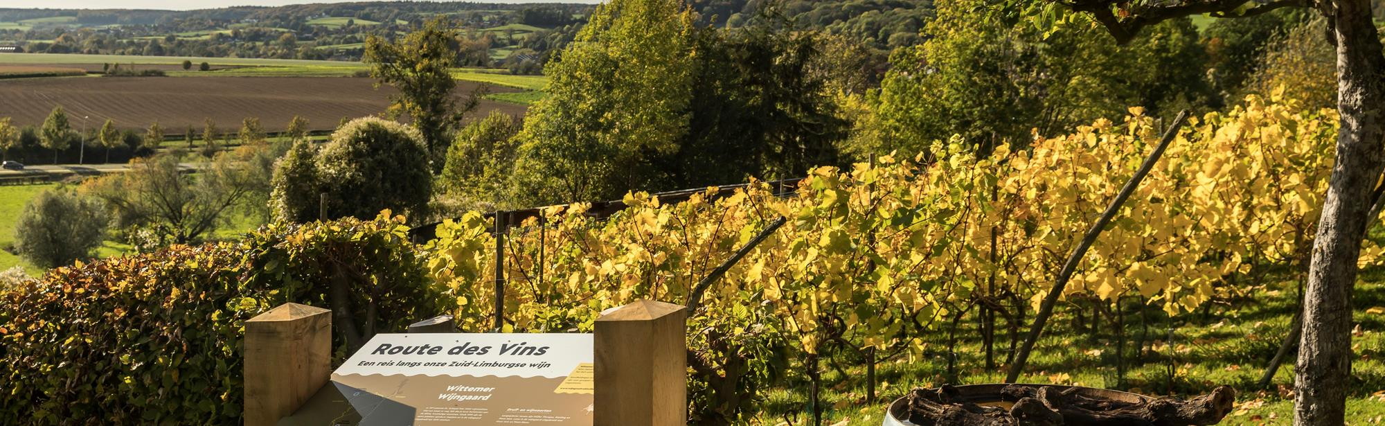 Route des Vins Wahlwiller Eys Vi1