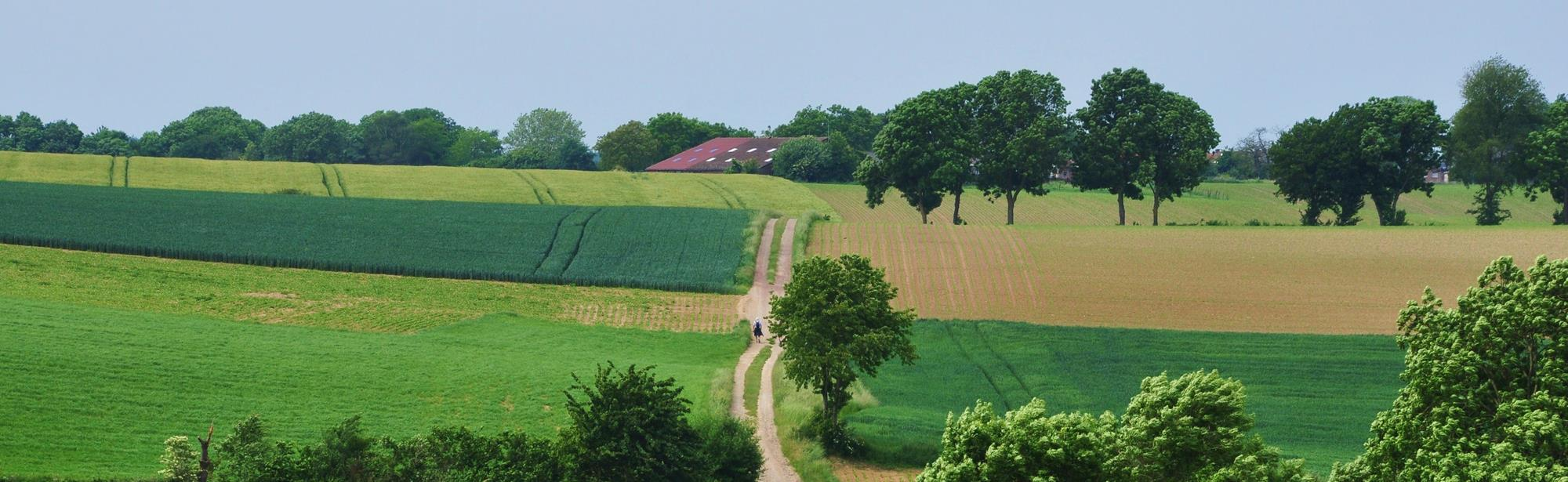 Land van Kalk