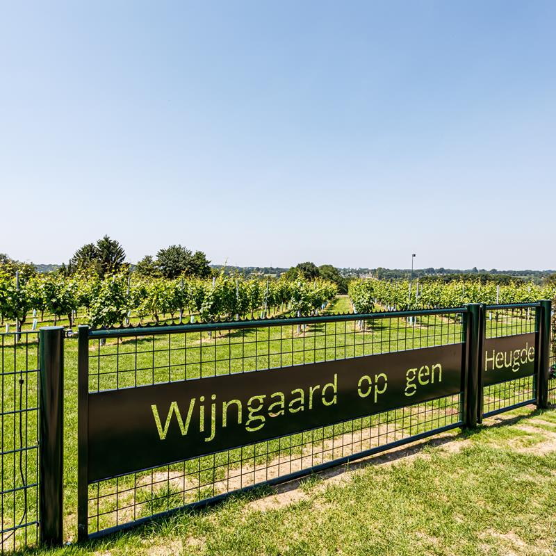 Wijngaard Op gen Heugde - Foto 1