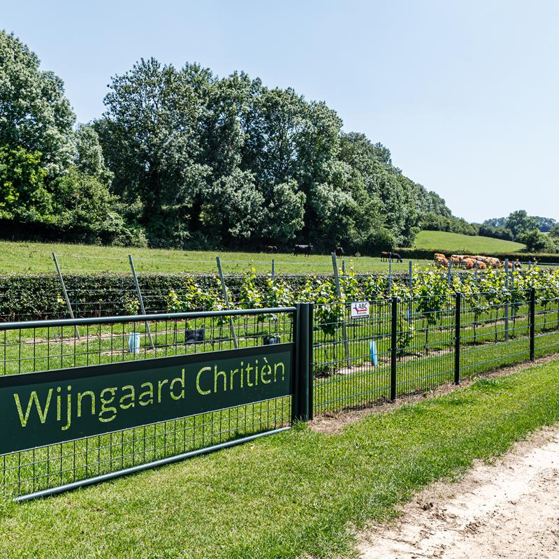 Wijngaard Chritièn - Foto 1