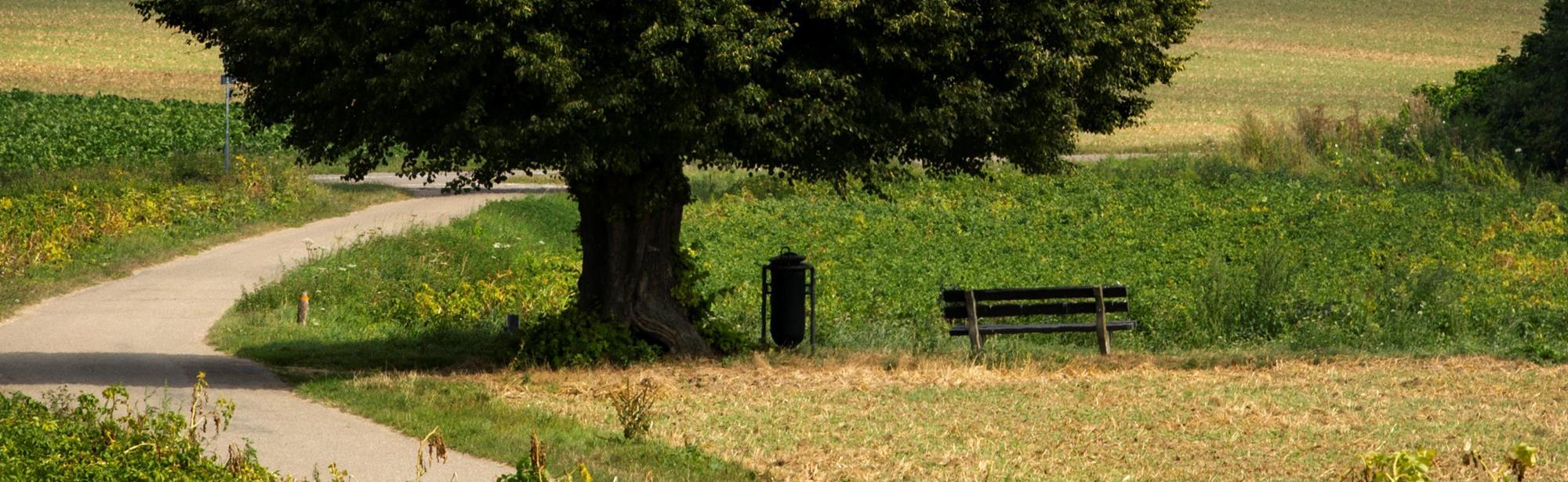 Fietsroute Geleenbeekdalroute