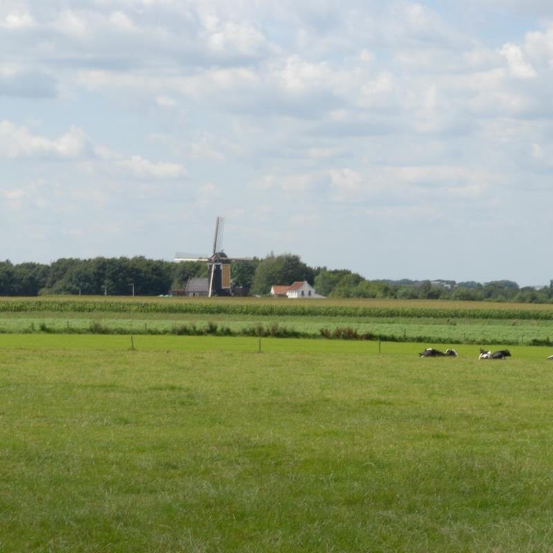 Genhout - Foto 0
