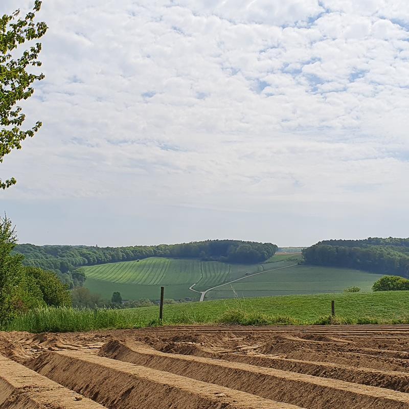 Reijmerstok - Foto 1
