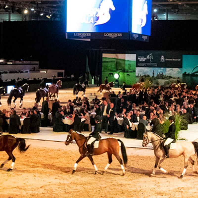 Limburgs Paardensport Gala - Foto 3
