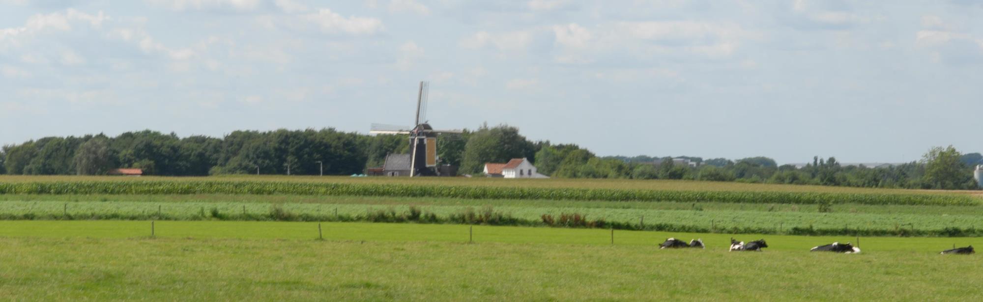 Groot Genhout
