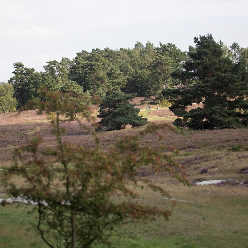 Brunssum - Foto 2