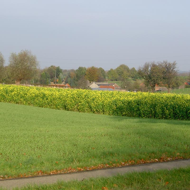 Landgoed Aalbeek - Foto 0