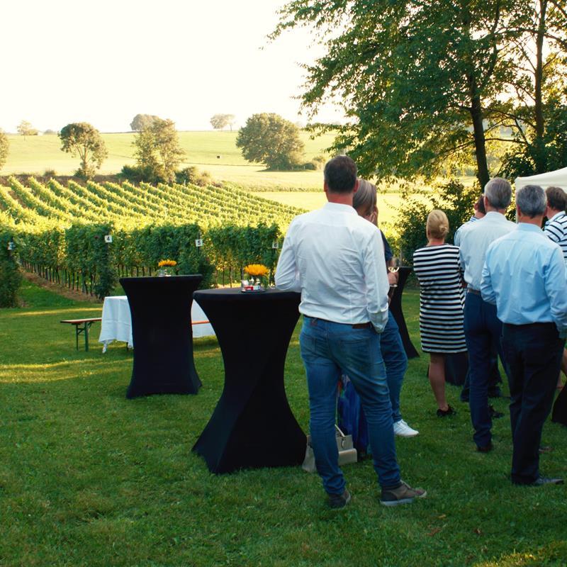 Wijngaard Kruisboom - Foto 1