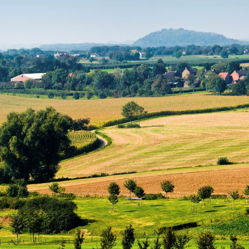 TIP Zuid-Limburg - Foto 2